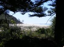 Woolgoolga Beach