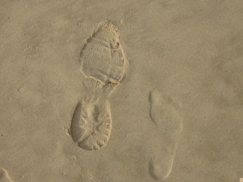 Shoe foot