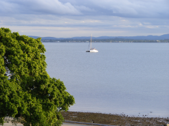 Sail Boat in Bramble Bay 1