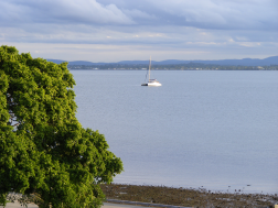 Sail Boat in Bramble Bay 1