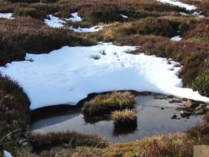 Thredbo Mountain Top