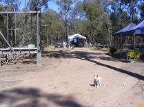 Chi at the campsite