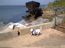 Chi Gayundah Wreck