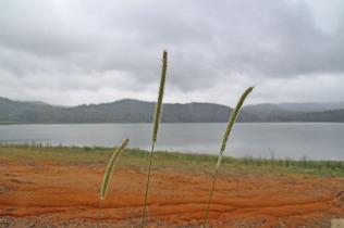 6 lake 2
