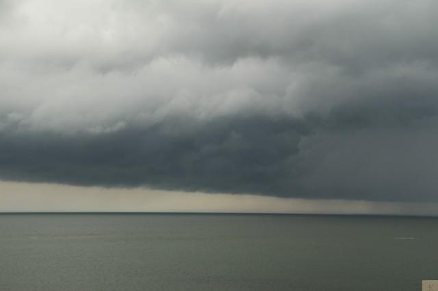 Moreton Bay 3
