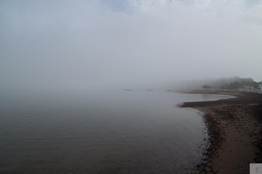 Fog (2/6)