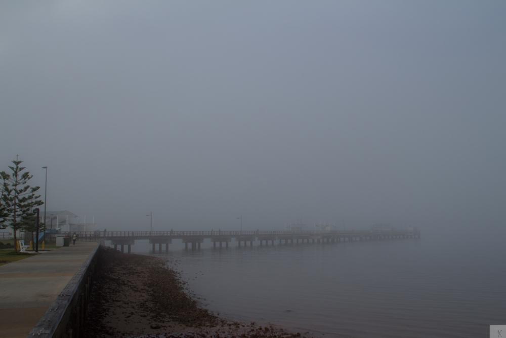 Fog (3/6)
