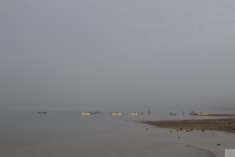 Fog (4/6)