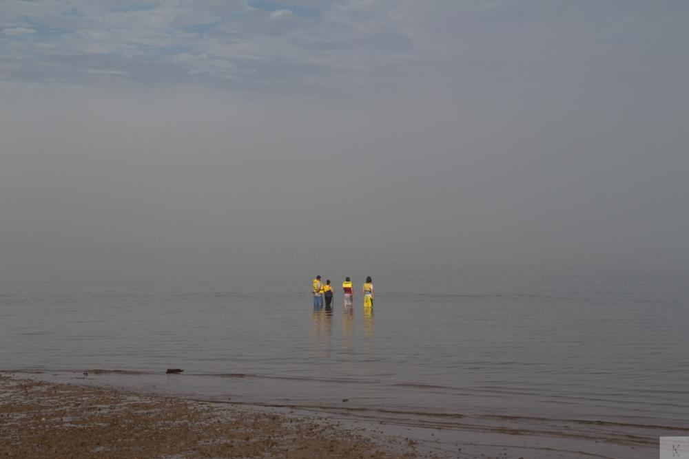 Fog (6/6)