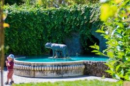 Hamilton gardens 15