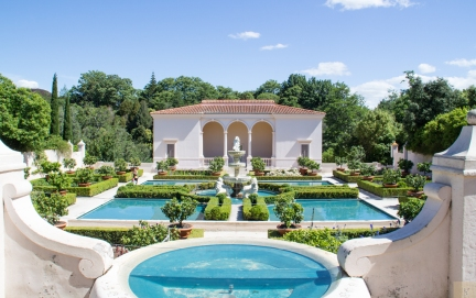 Hamilton gardens 16