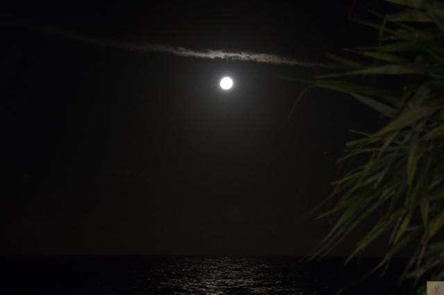 Mooloolaba Moon 3