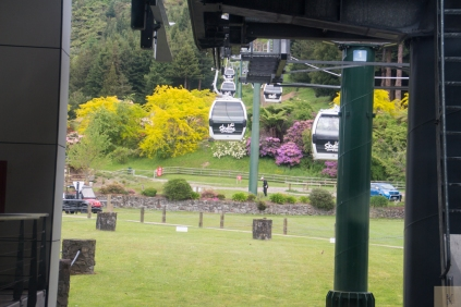 Rotorua 5