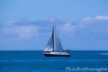 sunshine-coast-3